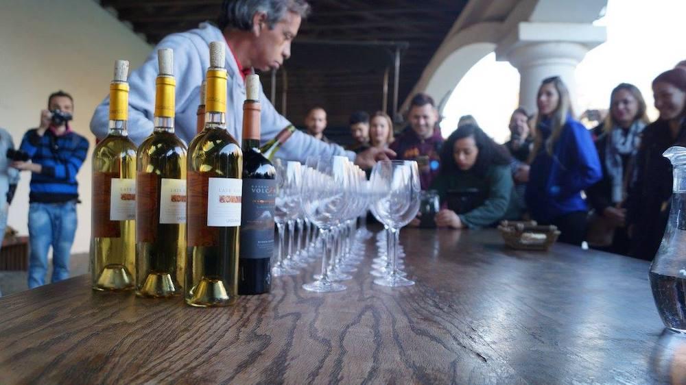 zuid-amerikaanse-wijnen-voor-beginners